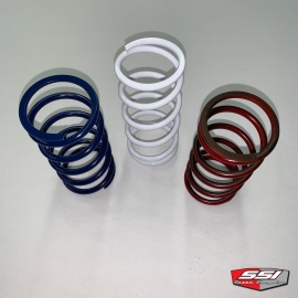 P90X DRIVEN CLUTCH SPRINGS